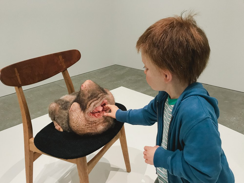Patricia Piccinini Curious Affection Exhibition at the Gallery of Modern Art in Brisbane
