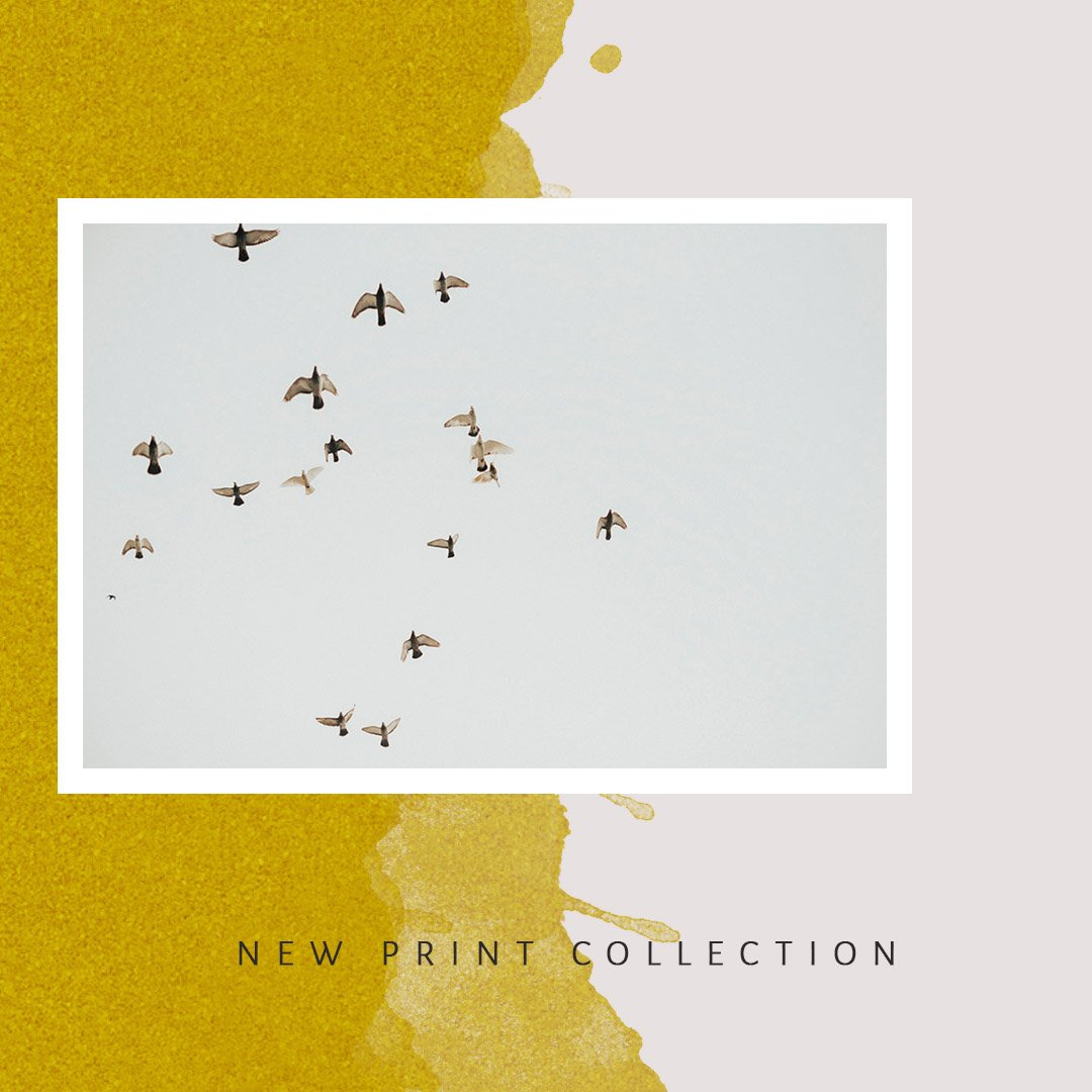 LAUNCH : THE PRINT SHOP IS OPEN