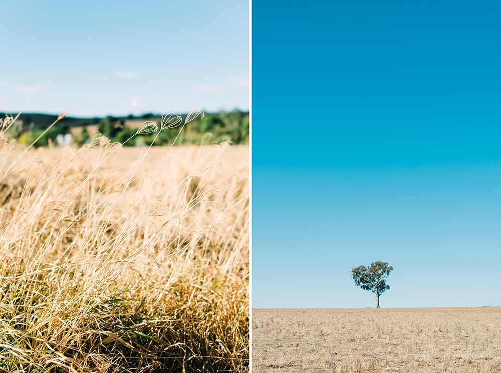 The Country NSW Bush - Australian Wedding & Travel Photographer - Deb Boots