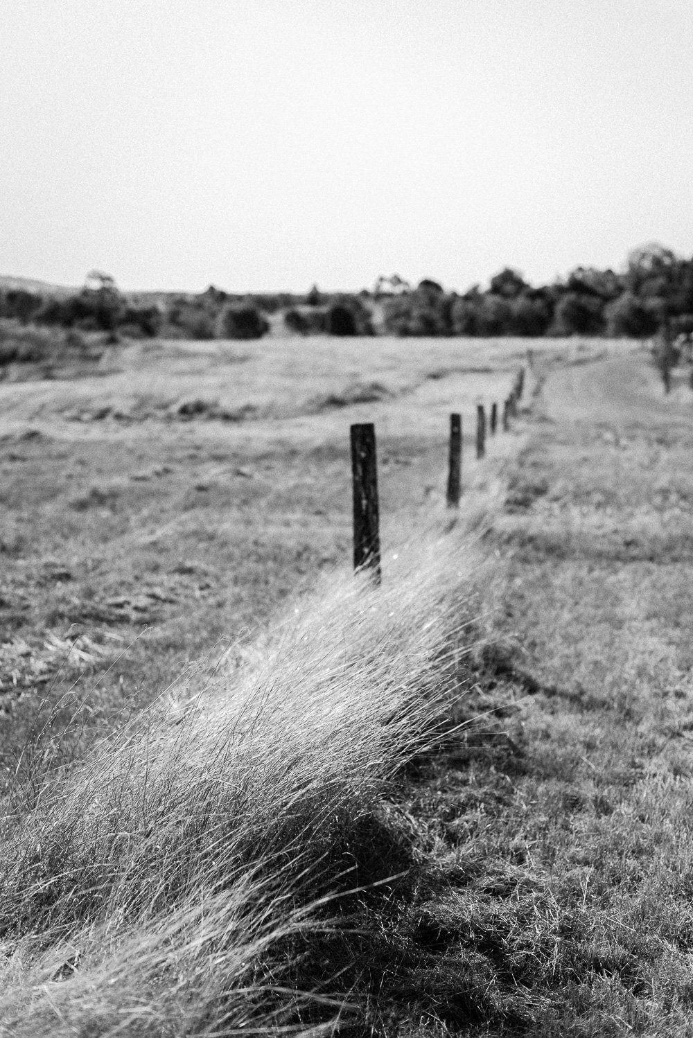 black & white photo countryside - Travel Photographer Deb Boots