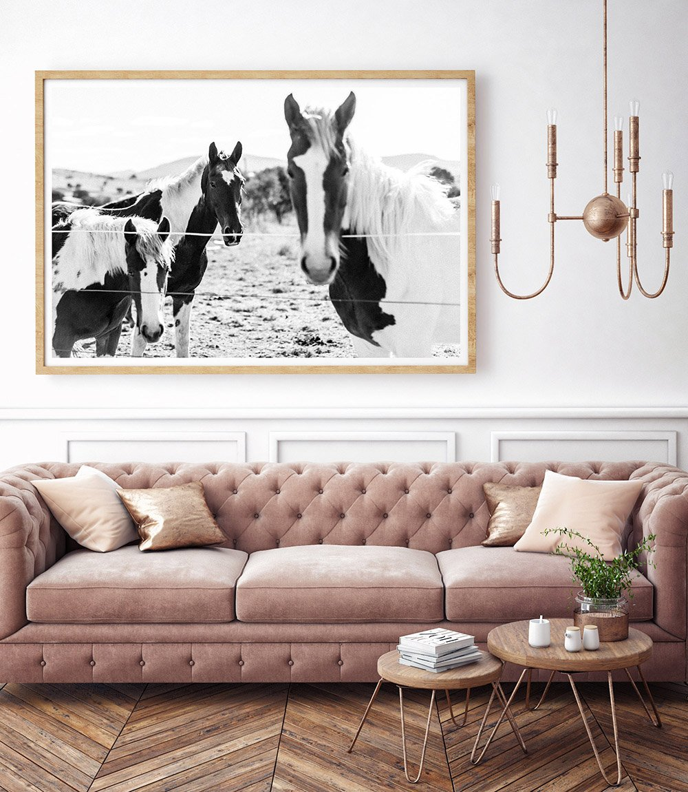 Paint Horse Trio Black & White Photographic Print - Framed Print in Living Room