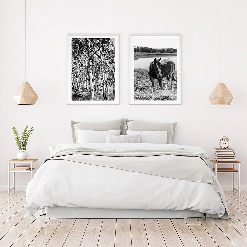 Pairing of Australian Bush & Horse Photograhpic Prints - Framed Art Prints In Bedroom