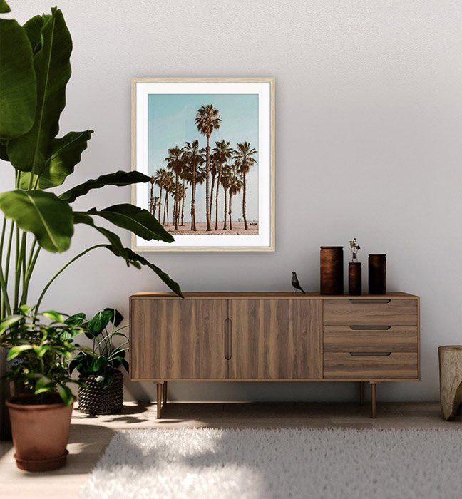 Art Print of Palm Tree on Apartment wall